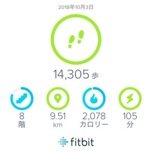 fitbit-daily-record